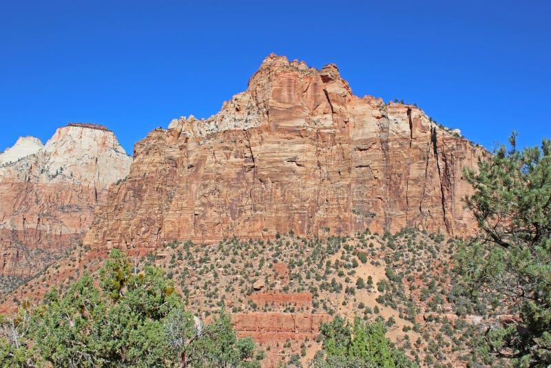 Parque nacional de Zion, Utá fotografia de stock royalty free