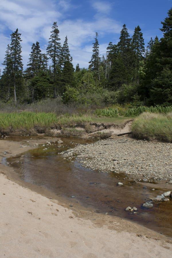 Parque nacional 431 del Acadia fotos de archivo