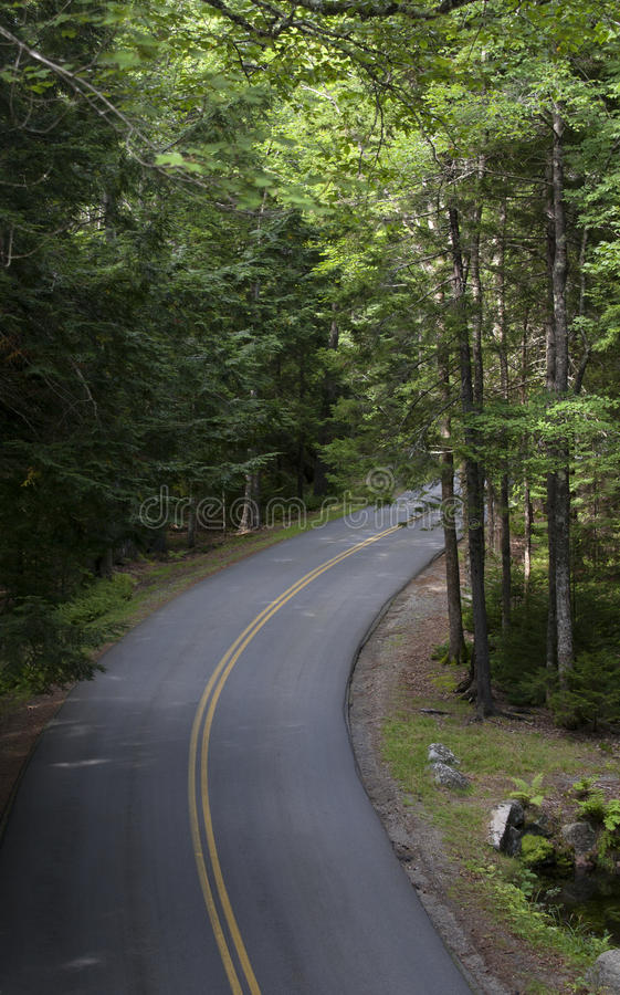 Parque nacional 485 del Acadia foto de archivo