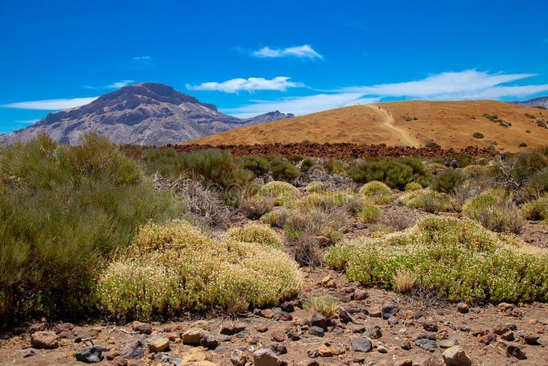Parque nacional del Teide, vista do parque mágico fotografia de stock