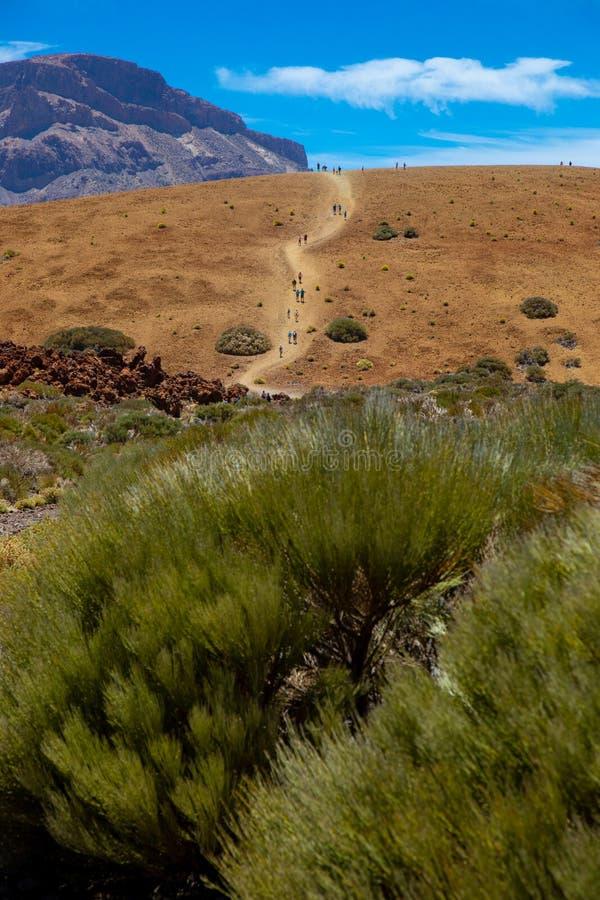 Parque nacional del Teide, vista do parque mágico fotografia de stock royalty free
