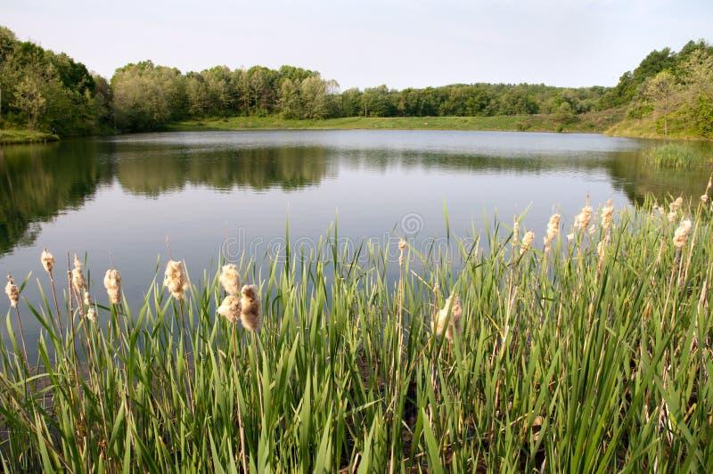 Parque nacional del valle de Cuyahoga foto de archivo libre de regalías