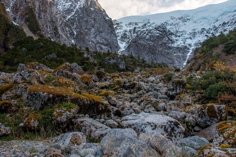 Parque Nacional di Queulat, Carretera australe, strada principale 7, Cile fotografia stock libera da diritti