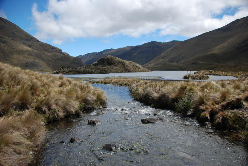 Parque nacional do Ecuadorian fotografia de stock royalty free