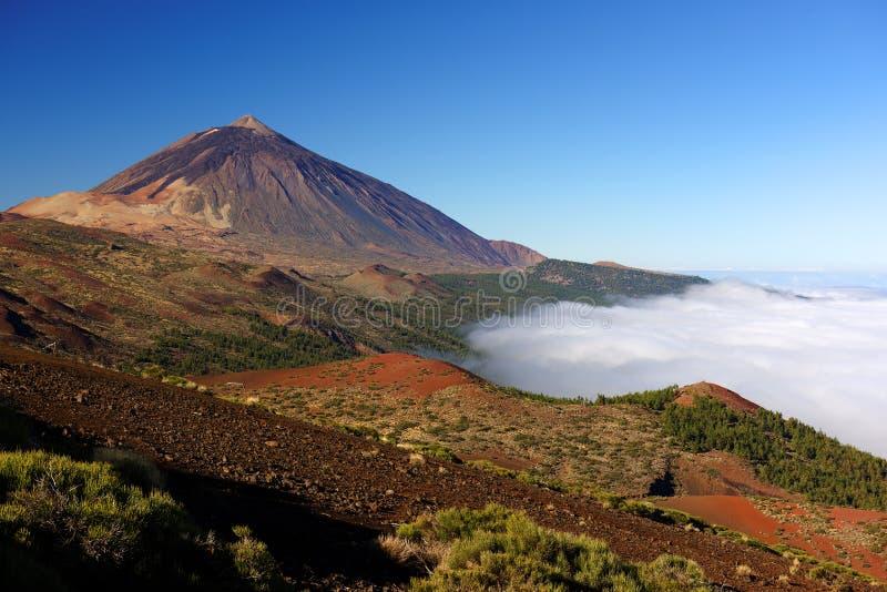 Parque nacional do EL Teide fotografia de stock royalty free