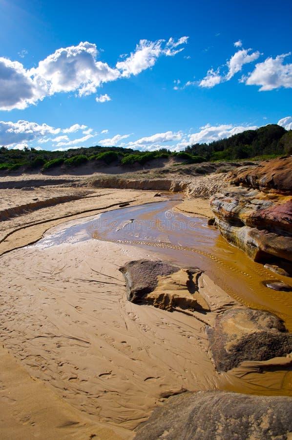 Parque nacional do louro da Botânica imagens de stock