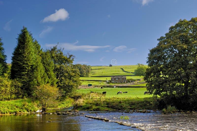 Parque nacional dos Dales de Yorkshire fotos de stock royalty free