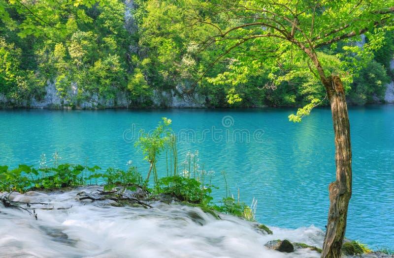 Parque nacional dos lagos Plitvice fotos de stock