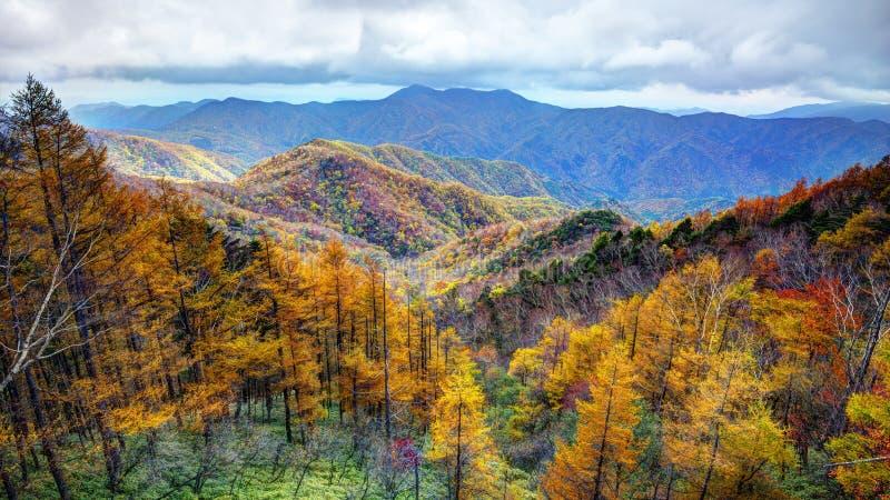 Parque nacional en Japón foto de archivo