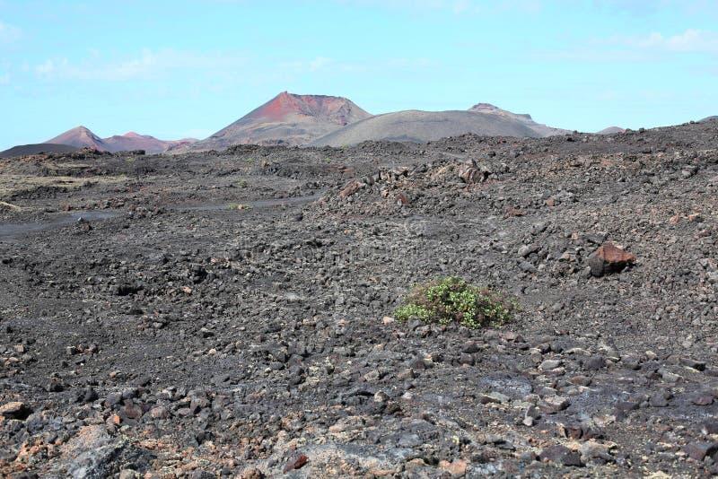 Parque nacional escénico de Timanfaya en la isla de Lanzarote, islas Canarias, España imagen de archivo libre de regalías