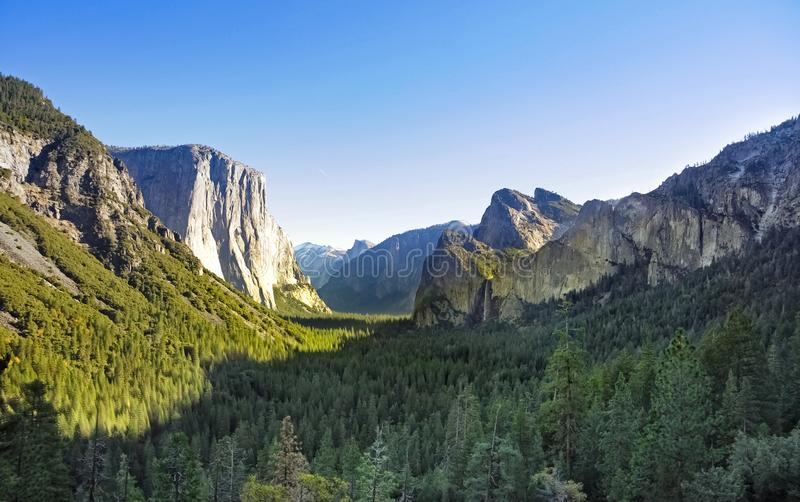 Parque nacional Forest Valley de Yosemite imagem de stock royalty free