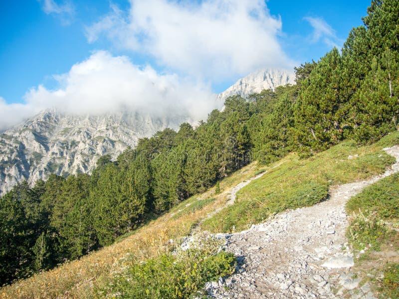 Parque nacional Grecia de olympus de la trayectoria del rastro E4 fotografía de archivo libre de regalías