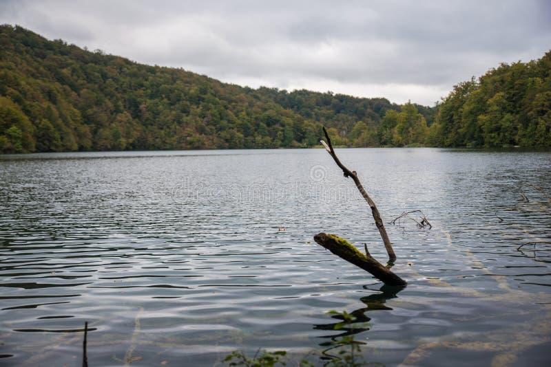 Parque nacional hermoso en Croacia, lagos Plitvice foto de archivo