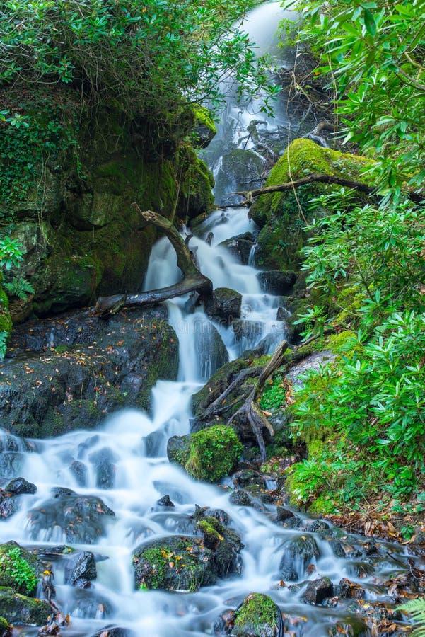 Parque nacional Inglaterra de Dartmoor de la cascada fotografía de archivo libre de regalías