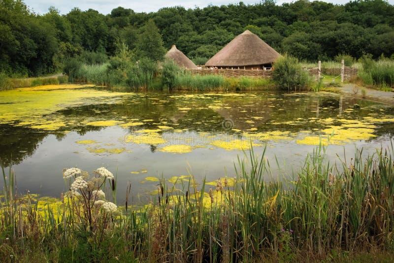 Parque nacional irlandês da herança Wexford ireland foto de stock royalty free