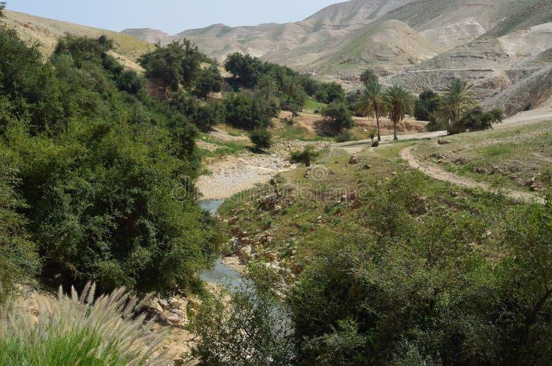 Parque nacional Israel de Ein Prat foto de stock