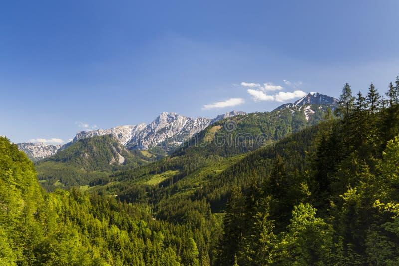 Parque nacional Kalkalpen em Áustria imagem de stock
