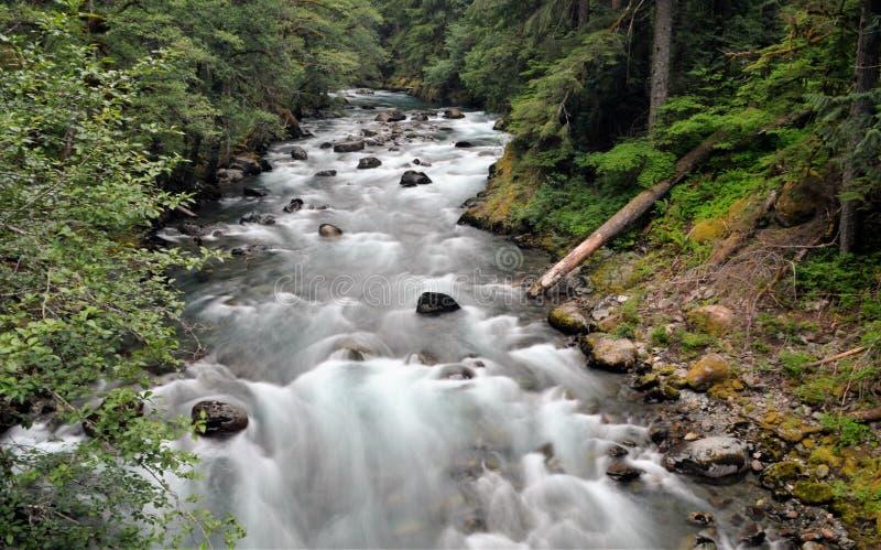 Parque nacional mais chuvoso do Mt imagens de stock