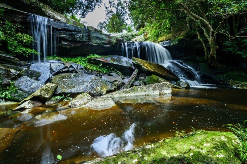 Parque nacional profundo de Phu Kradueng de la cascada del bosque, Tailandia fotos de archivo libres de regalías