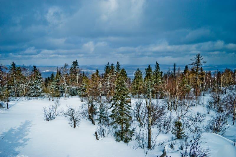 Parque nacional Taganay, região de Chelyabinsk, Rússia fotografia de stock