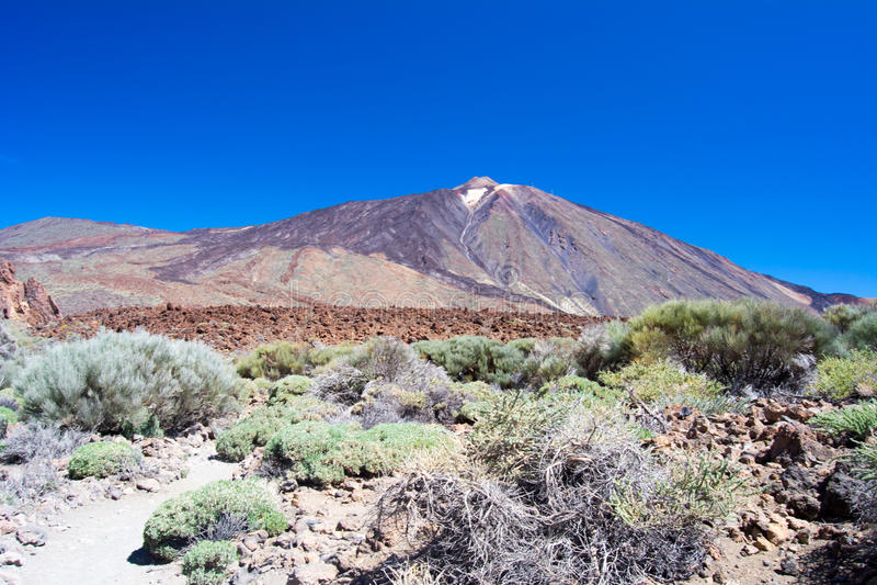 Parque nacional Teide fotografía de archivo