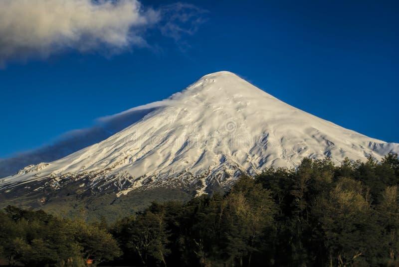 Parque Nacional Vicente Perez Rosales imágenes de archivo libres de regalías