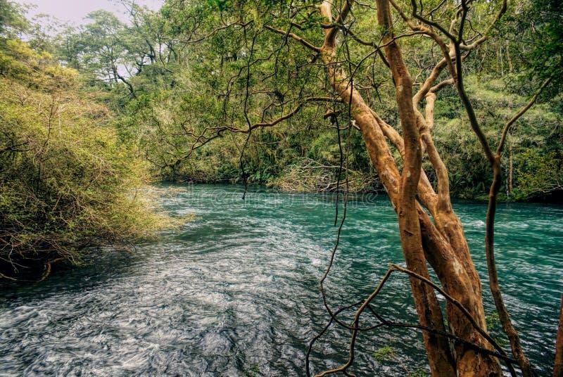Parque Nacional Vicente Perez Rosales stock photos