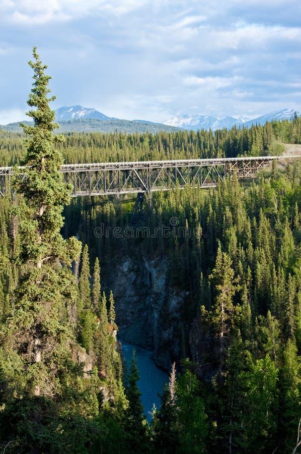 Parque nacional y coto del St. Elias de Wrangell imagen de archivo