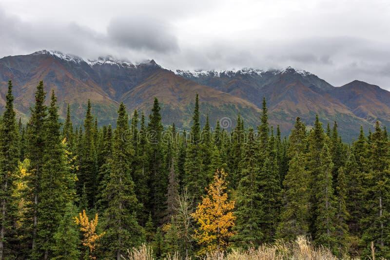 Parque nacional y reserva de Kluane fotografía de archivo libre de regalías