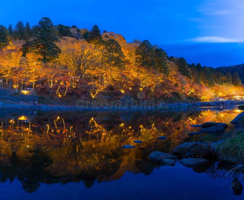 Parque Nagoya do outono da floresta de Korankei imagem de stock