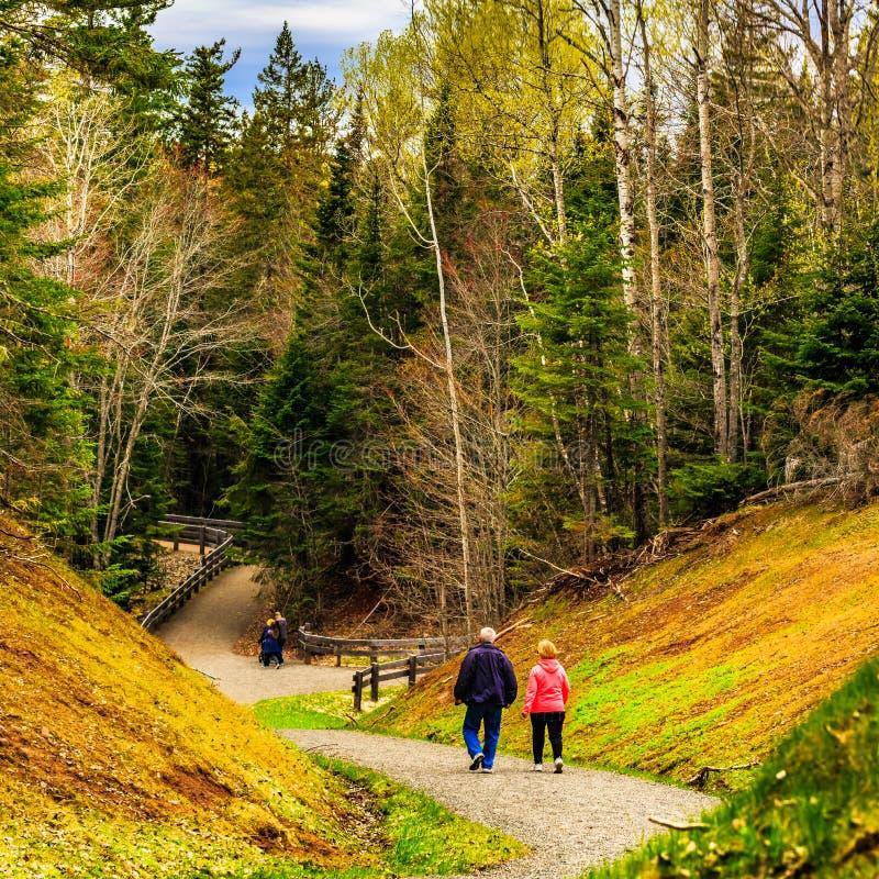 Parque natural da angra do moinho, maior Moncton, Novo Brunswick, Canad? imagem de stock