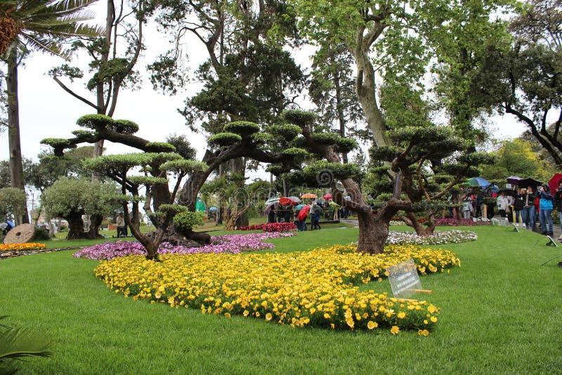 Parque natural da flor de Genebra Nervi foto de stock