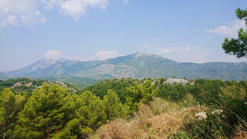 Parque natural de la montaña Biokovo y árboles de la Riviera de Makarska, Dalmatia imagen de archivo