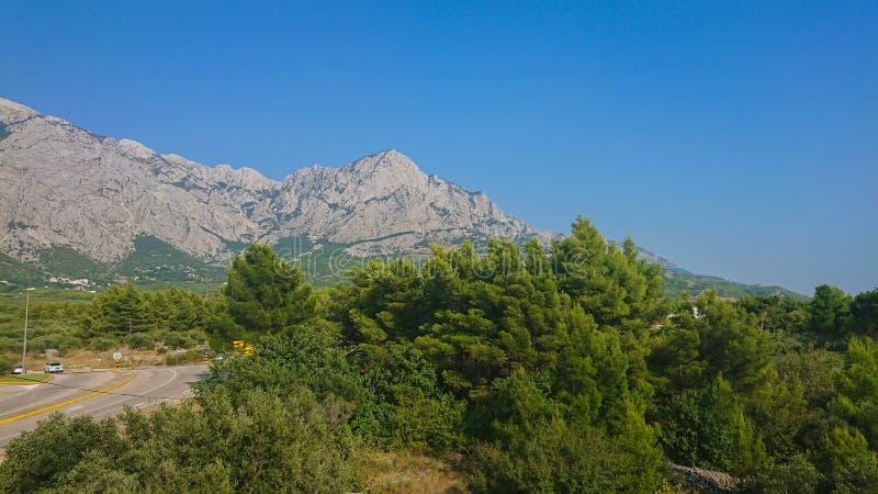 Parque natural de la montaña Biokovo y árboles de la Riviera de Makarska, Dalmatia imágenes de archivo libres de regalías