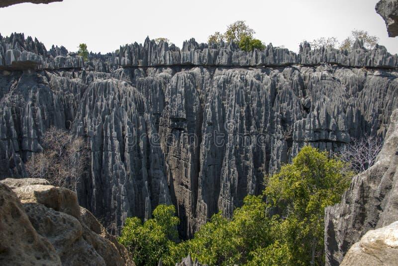 Parque natural de Tsingy de Bemaraha fotos de stock royalty free