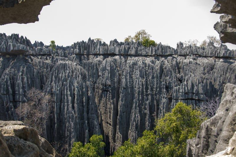 Parque natural de Tsingy de Bemaraha fotografia de stock royalty free