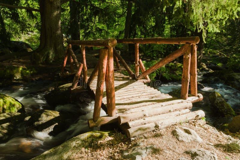 Parque natural de Vitosha cerca de Sofía, Bulgaria El área de oro de los puentes Paisaje de la corriente del agua y del puente de imagen de archivo libre de regalías