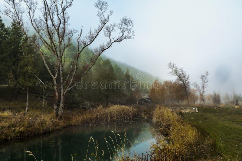 Parque natural del barranco del río de Lobos fotos de archivo libres de regalías