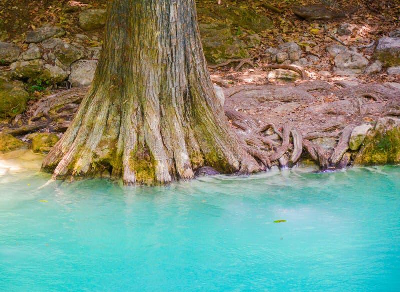 Parque natural del EL Chiflon, Chiapas, México 25 de mayo fotos de archivo libres de regalías