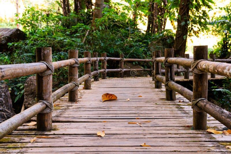 Parque natural e curso da caminhada da ponte fotografia de stock