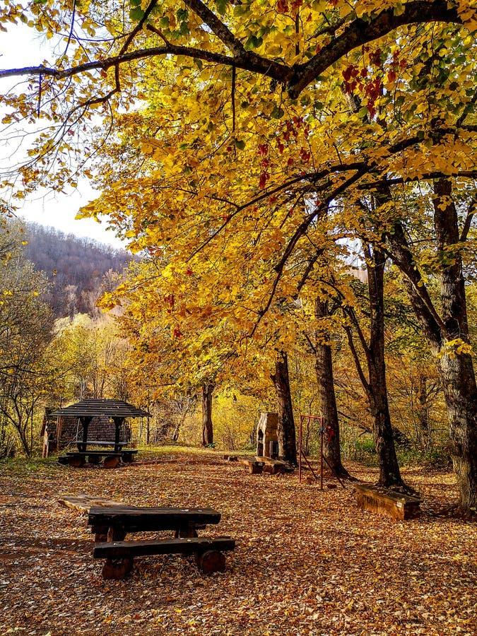 Parque natural Grza perto do Paracin, Sérvia fotos de stock