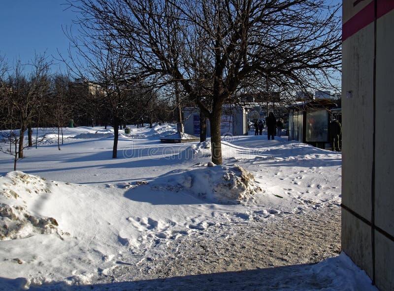 Parque nevado del invierno en Moscú foto de archivo