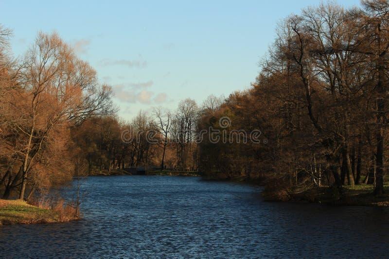 Parque no banco de rio fotografia de stock