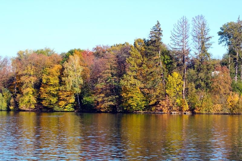Parque no outono, nas árvores e no lago outono, paisagem, cores Cor, colorida fotografia de stock royalty free