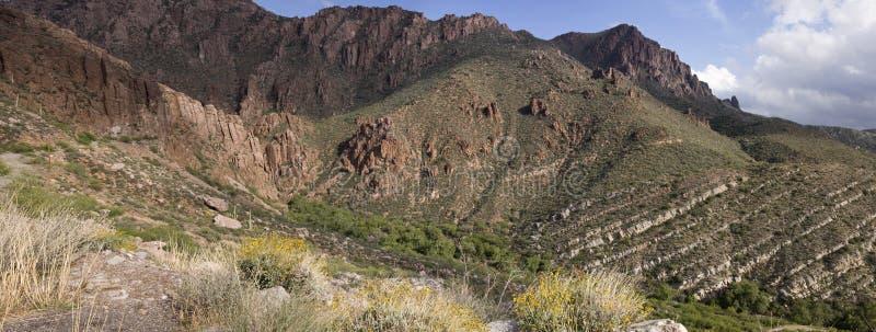 Parque o Arizona da floresta nacional de Tonto imagem de stock