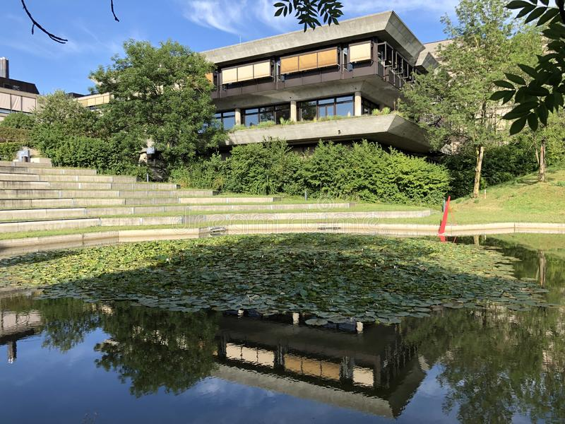 Parque o Irchelpark o parque Irchel - Zurich de Irchel foto de archivo
