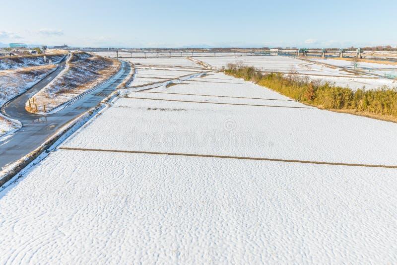 Parque público con la nieve blanca foto de archivo