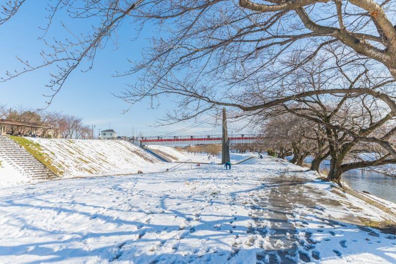 Parque público con la nieve blanca fotografía de archivo