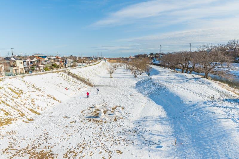 Parque público con la nieve blanca fotos de archivo libres de regalías