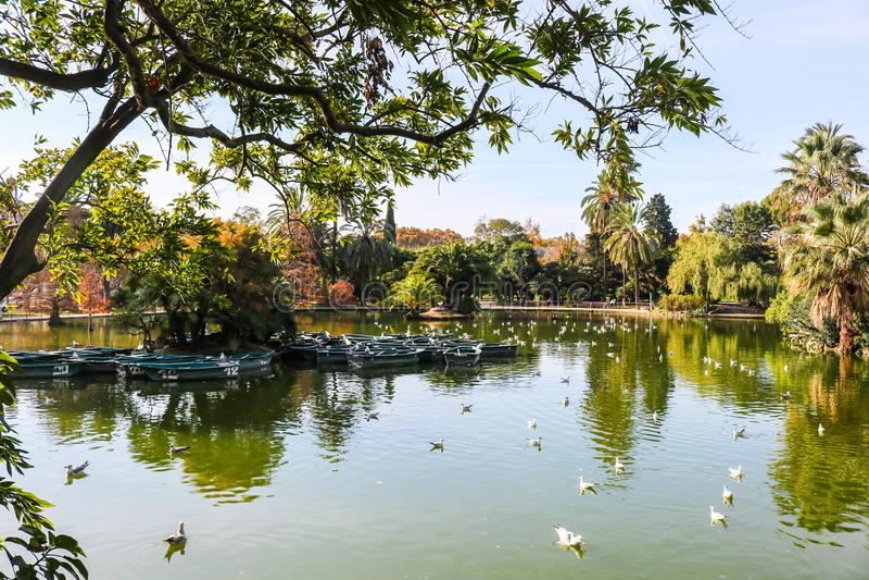 Parque público en Barcelona, España foto de archivo libre de regalías